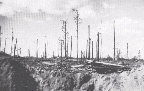 Ihantalan ratkaisutaistelut 28.6.-6.7.1944
